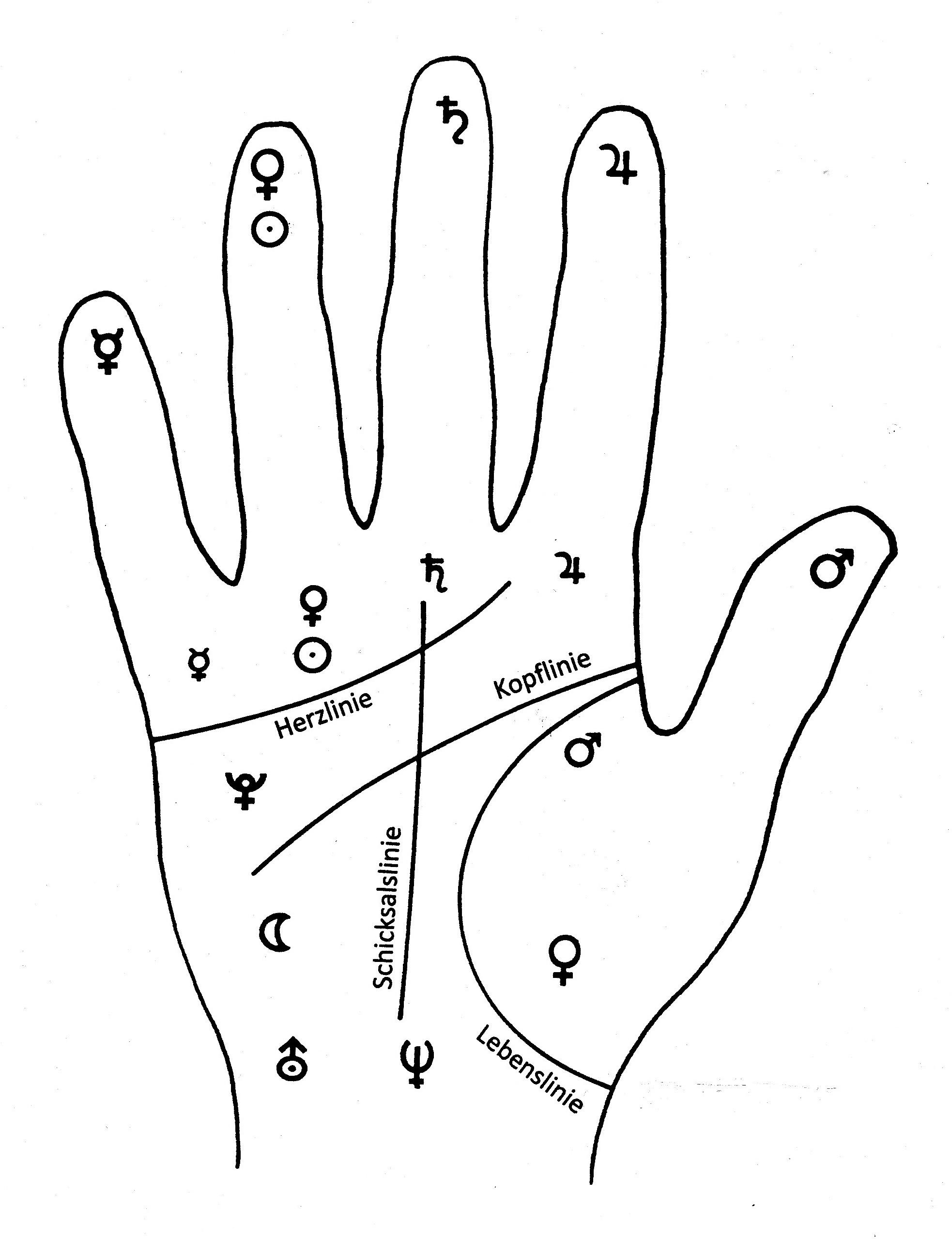 handflächen lesen
